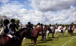 ponies in line up 2001
